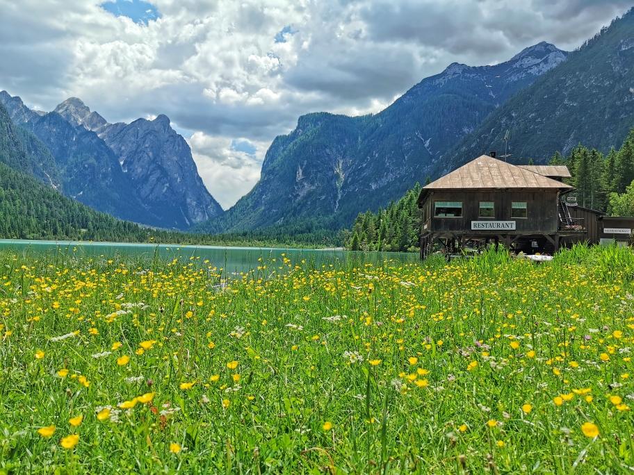 Blühende Wiesen am Nordufer des Sees