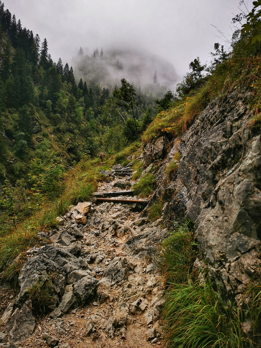 Kleiner Steig auf dem Weg zur Höllentalangerhütte