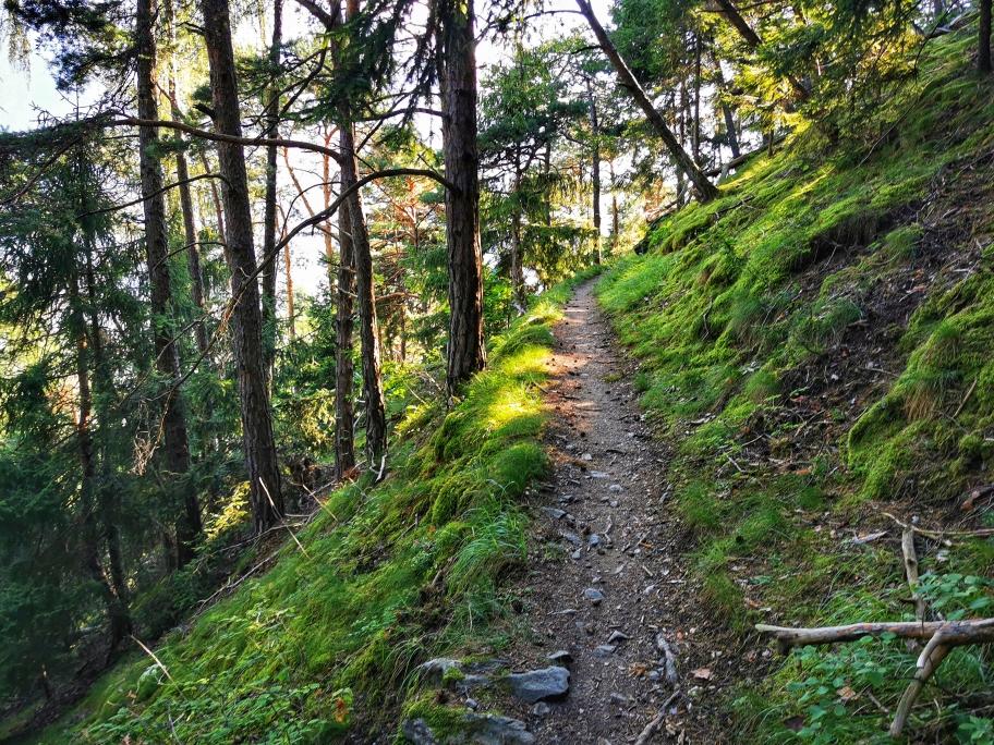... teilweise auf schmalen Waldwegen geht es bergan