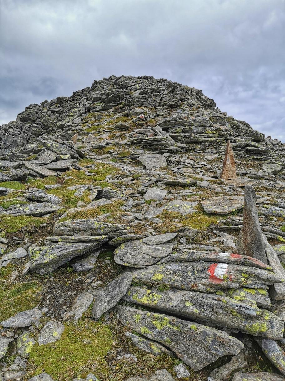 Kurz vor dem Gipfel des Hohen Zahn 2.927m