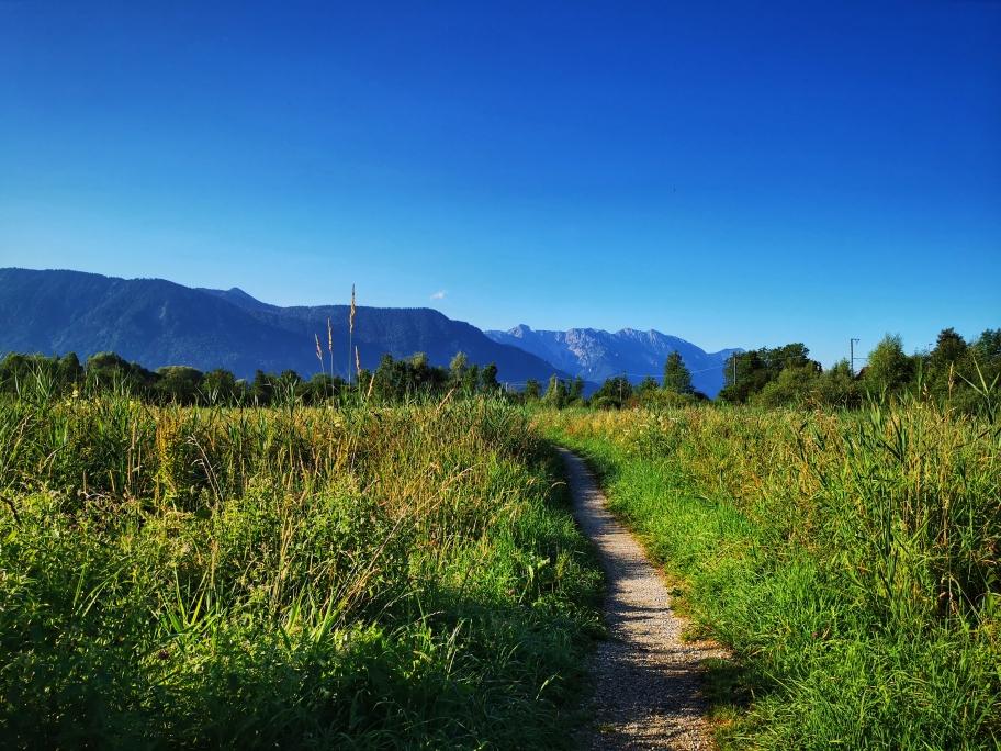 Im Murnauer Moos, im Hintergrund das Estergebirge