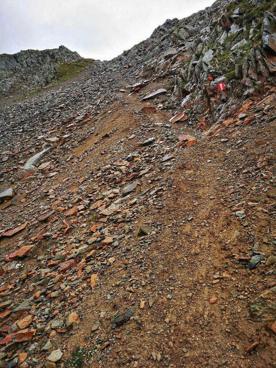 Steiler Aufstieg zur Niederreichscharte