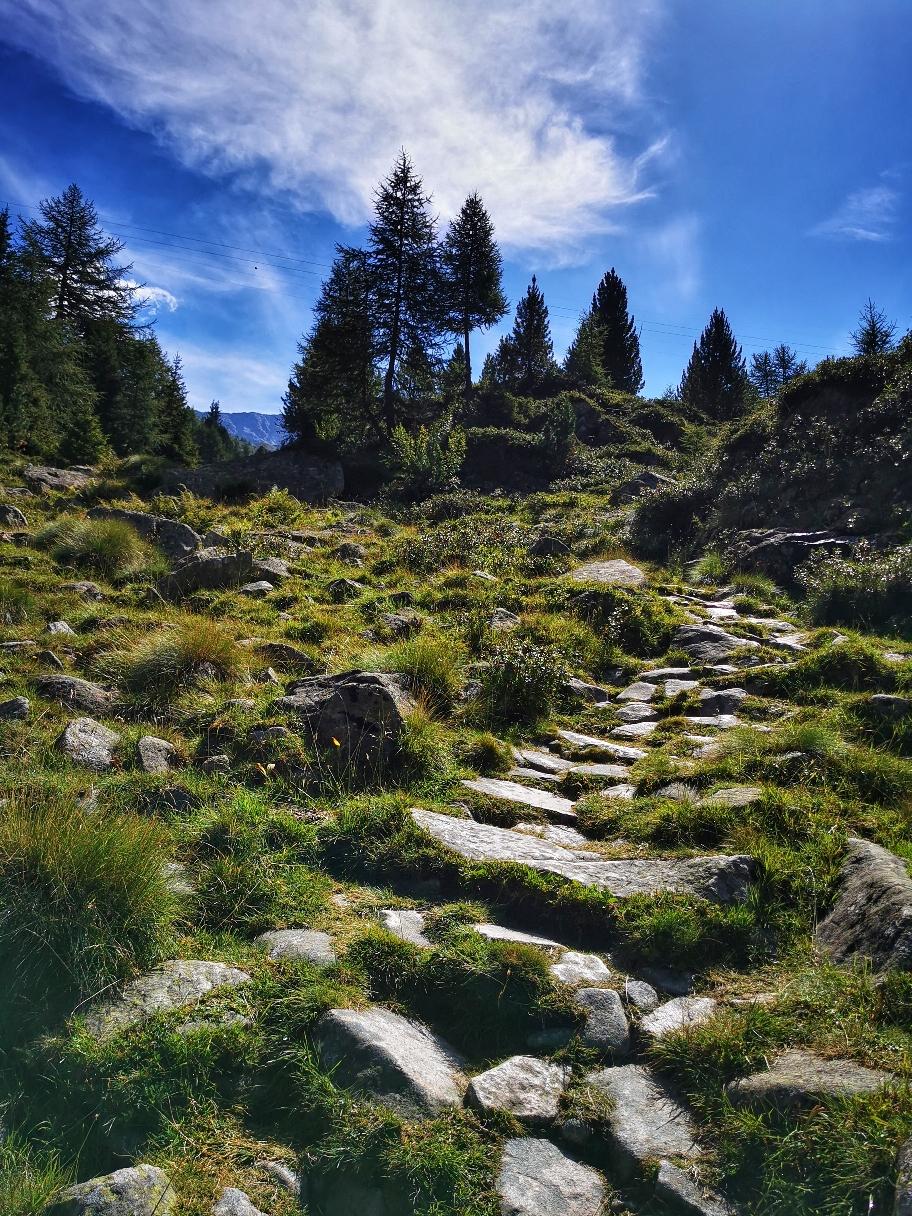 Auf den üblichen Bergpfaden geht's hinauf zum Rifugio Garibaldi