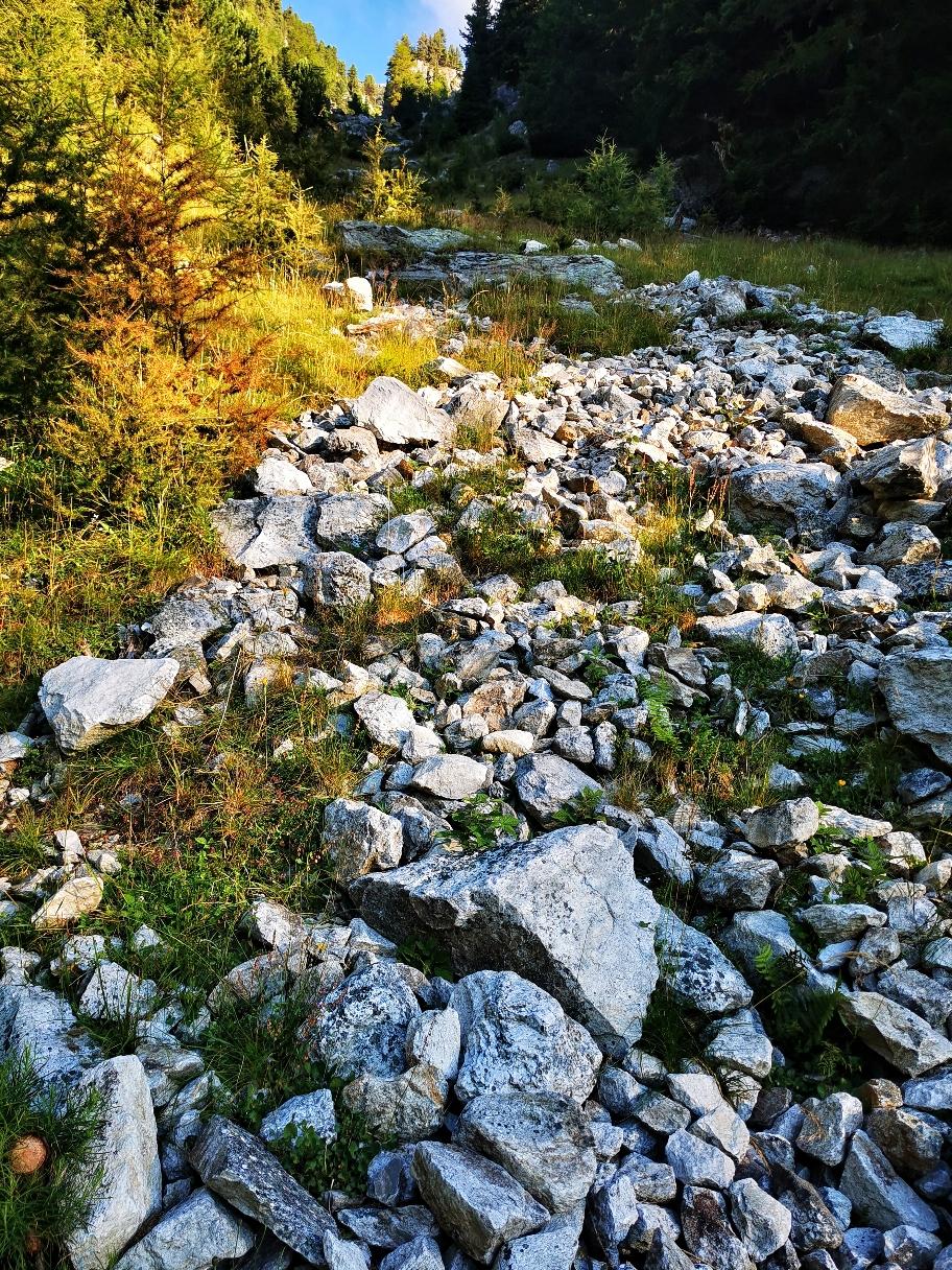 Aus diesem Hang besteht vor allem bei Regen erhöhte Steinschlaggefahr