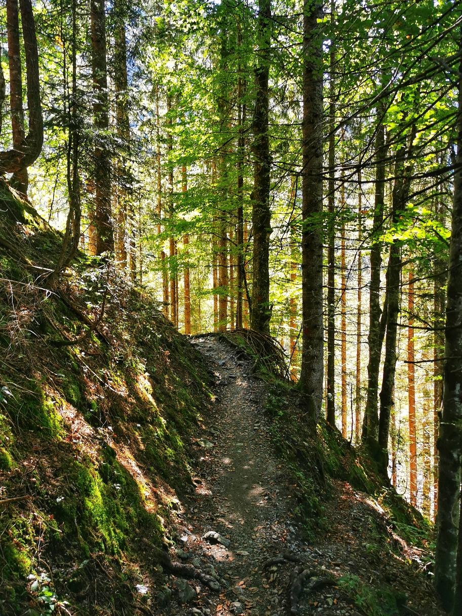 Aufstieg zum Freibergsee