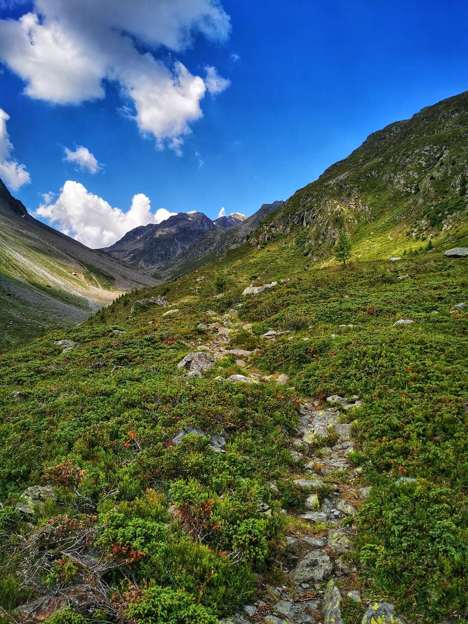 ... dann über normale Bergwege geht's immer weiter hinauf