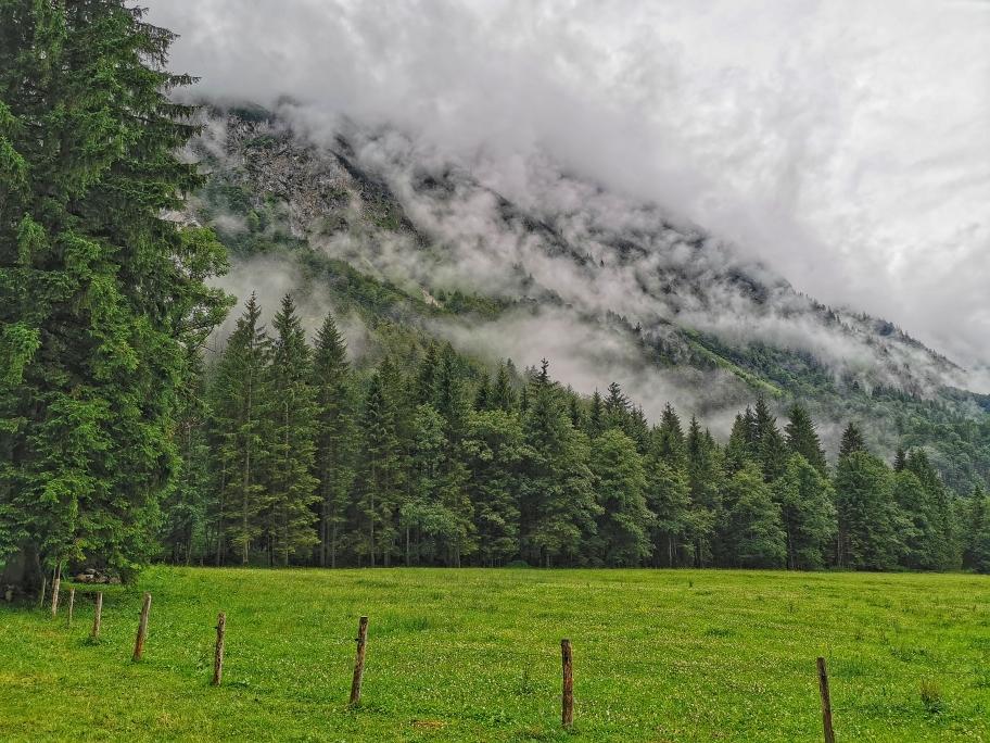 Die Wolken hängen tief in den Wäldern