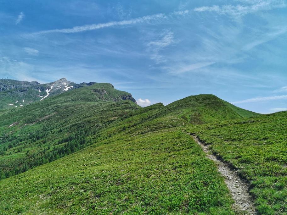 Der weitere Weg ist gut einsehbar, oben links die Weißspitze