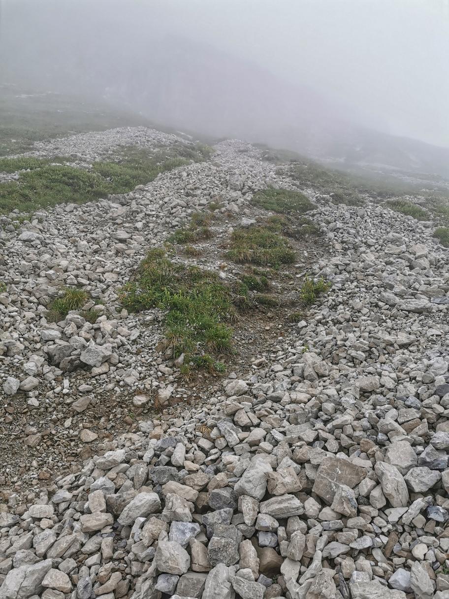 Geröllfelder am Fuße des Widderstein