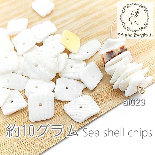 シェルチップ 貝 欠片 海 シーシェル パーツ マリン 夏 貝殻 特価 約10グラム/ai023