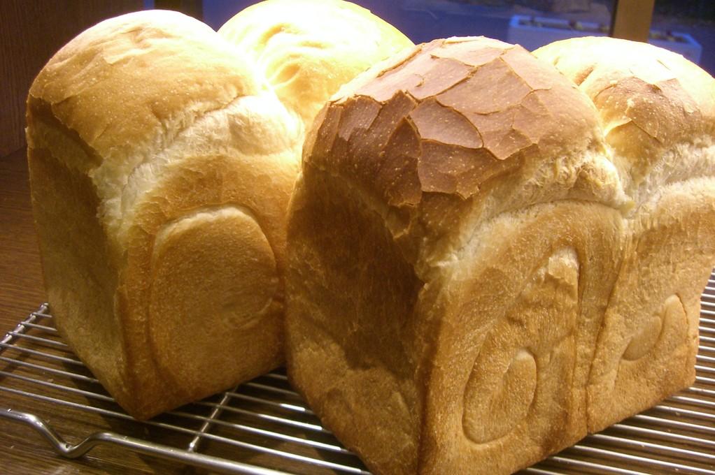 セミハード食パン