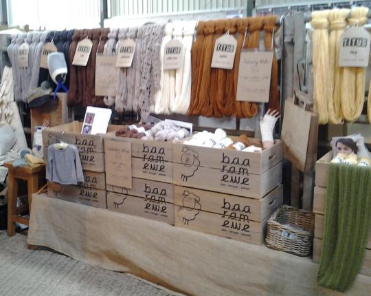 baa ram ewe's beautiful stand