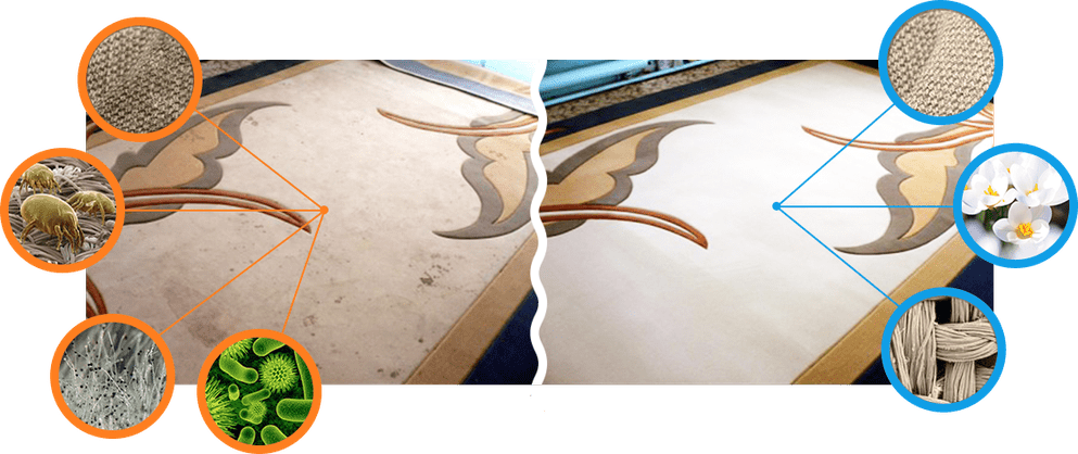 результат химчистки ковров на дому: до и после химчистки