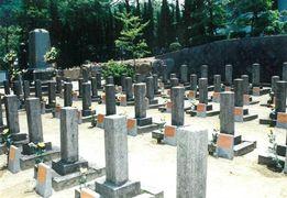 祖国の方向、北向きに並ぶ墓碑98基・松山市