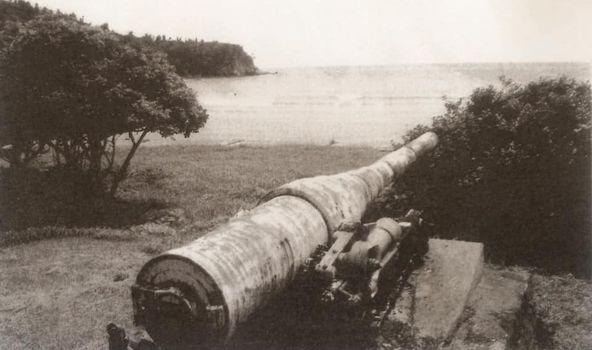 茂木浜のロシア大砲