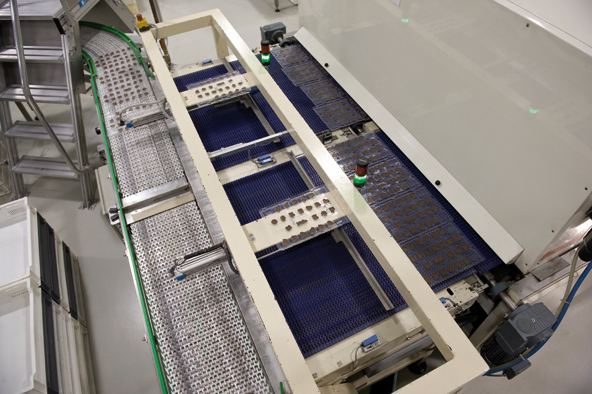 The forms that are still lying next to one another are automatically put on a conveyer belt and brought to the packaging facility.