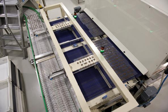 Automatisch werden die Formen, die bislang noch nebeneinander liegen, nacheinander auf ein Förderband geschoben, das sie anschließend zur Verpackungsstraße bringt.