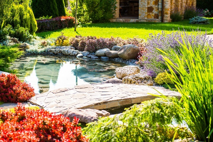 Exotischer Gartenteich sorgt für ein unvergessliches Ambiente
