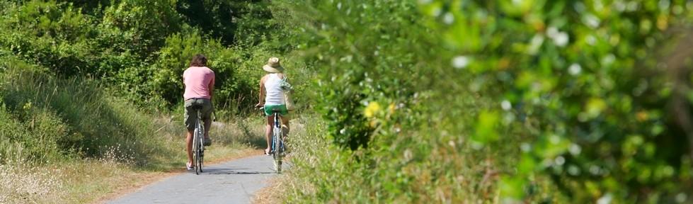 piste cyclable facile en forêt entre les communes de ondres et tarnos; liaisons avec les plages.