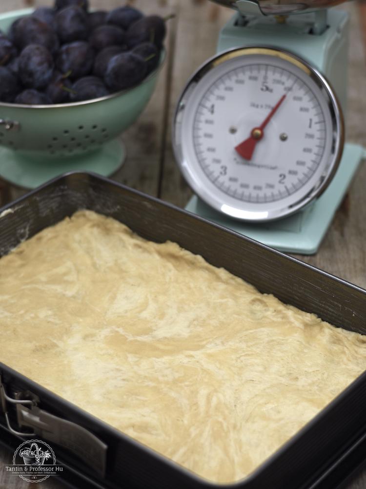 Zwetchgenkuchen mit Haferstreuseln & Zwillingsteig