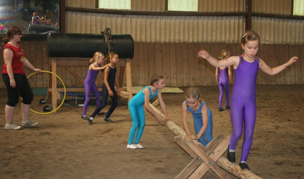Übungen auf dem Cavaletti ... unentbehrlich für´s Gleichgewicht