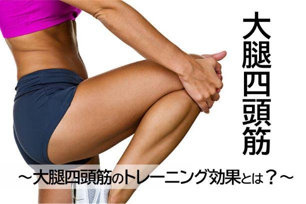 【大腿四頭筋】大腿四頭筋のトレーニング効果とは?