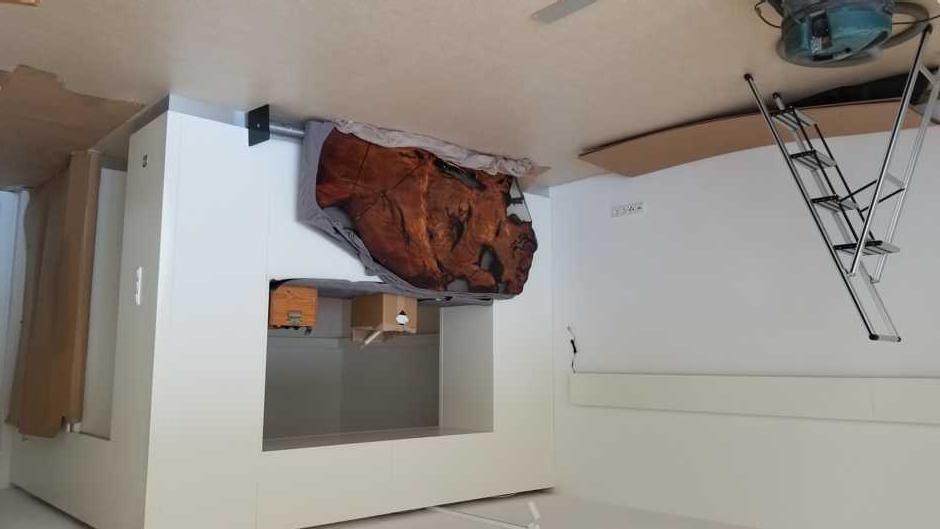 Ausstellungsraum mit Kauri Wurzeltisch und Einbauschrank als Schrankwand nach Maß