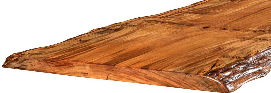 Konferenztisch aus außergewöhnlich großem Kauri Baum, exklusiver Holztisch aus Baumstamm mit großer massiver Tischplatte, Baumstammtisch aus prähistorischem Baum aus Neuseeland