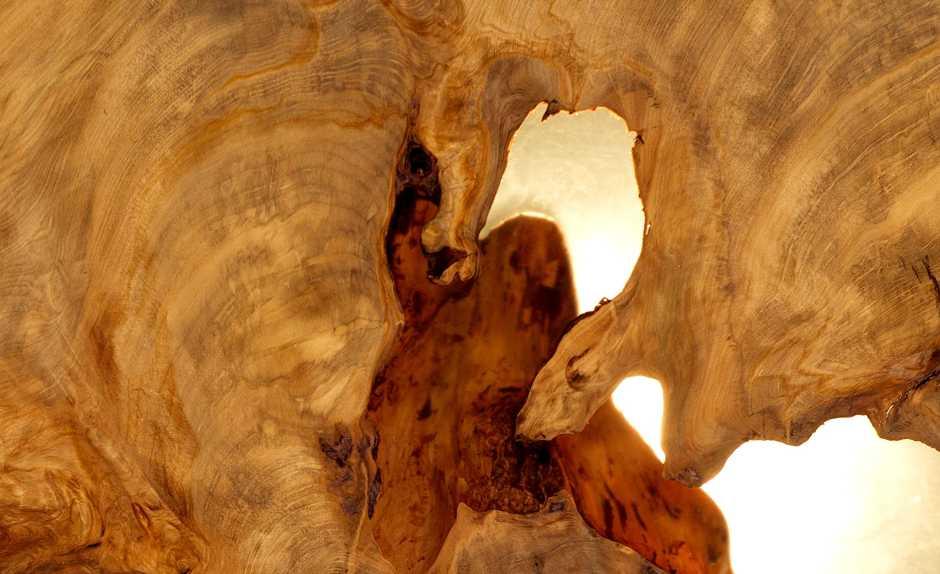 Möbel Kunstwerk exklusiver Holztisch aus altem Kauri Holz als Kapitalanlage, Geldanlage einzigartiges Tischunikat, einmalige Wertanlage Desingermöbel und Designertische