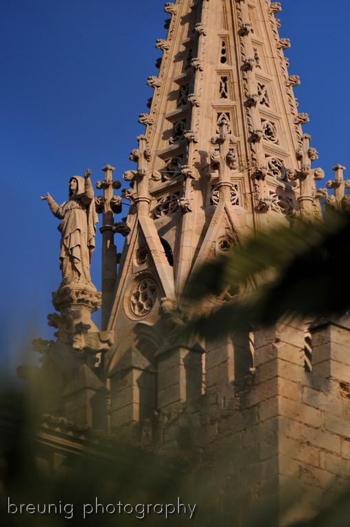 catedral la seu palma de mallorca III