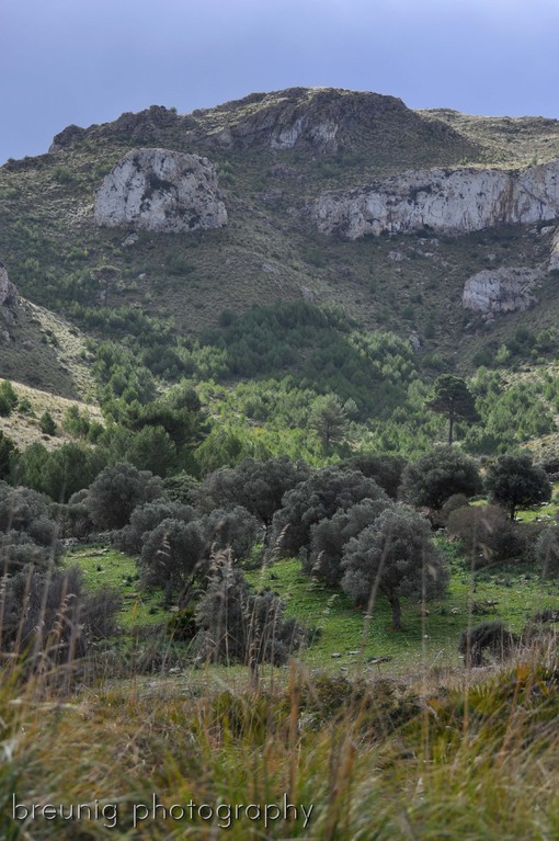 near ermita de betlem I