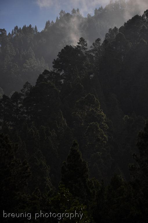 valle de orotava V - mystical