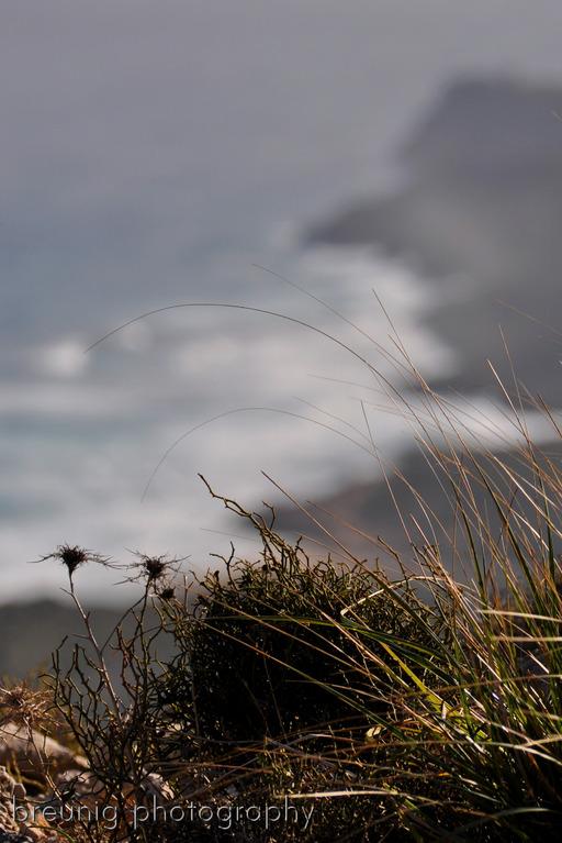 coast hike at parc naturel del llevant I