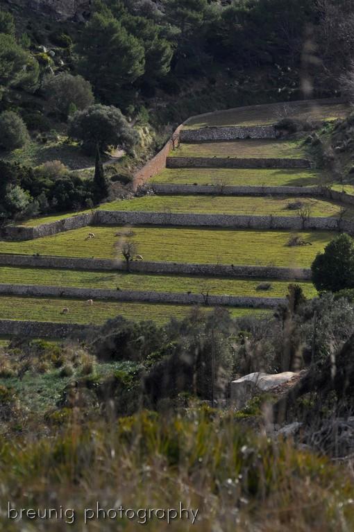 near ermita de betlem II