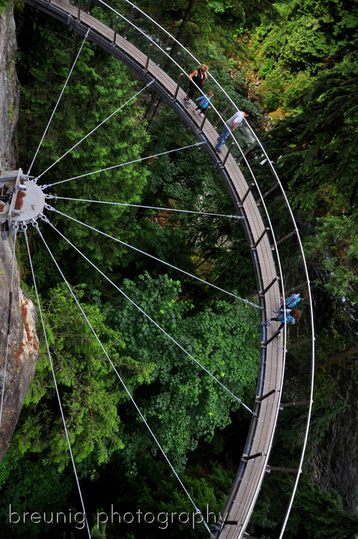capilano cliff walk II