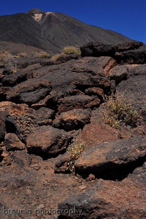 roques de garcia III