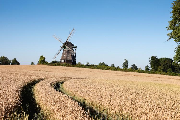 Farver Mühle in Wangels, Schleswig Holstein