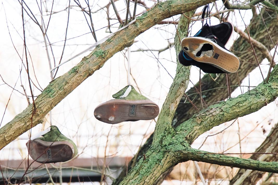 Schuhe am Baum