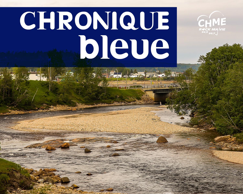La chronique Bleue