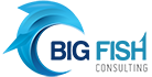 Big Fish Consulting (US)