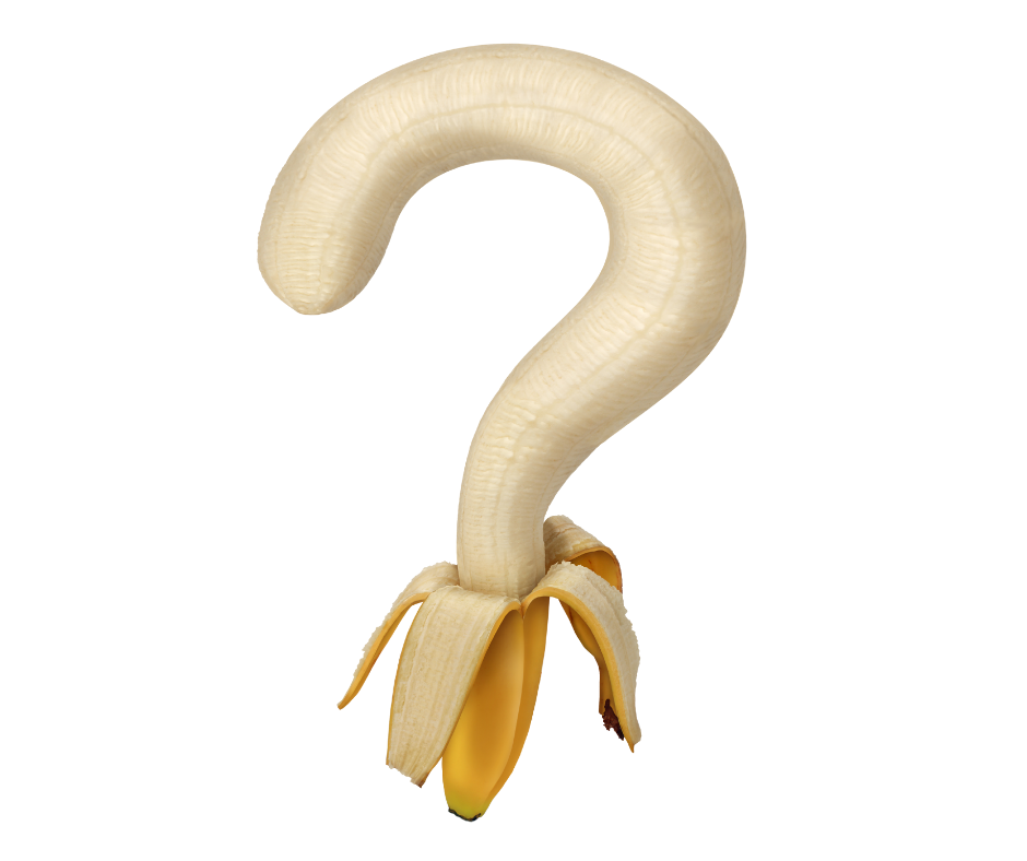 Ernährungsformen - Welche Ernährung passt zu mir?
