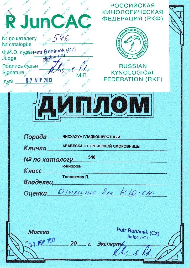 """07.04.2013.кл.юниоров, """"Отлично-II"""", RЮСАС, экс. Petr Rehanek(Cz)"""