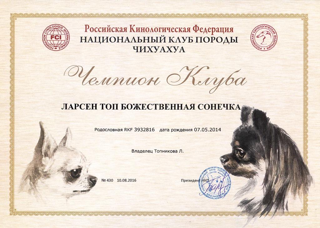 Вот он, долгожданный диплом Сонечки! Теперь ждем ГРАНД!))))