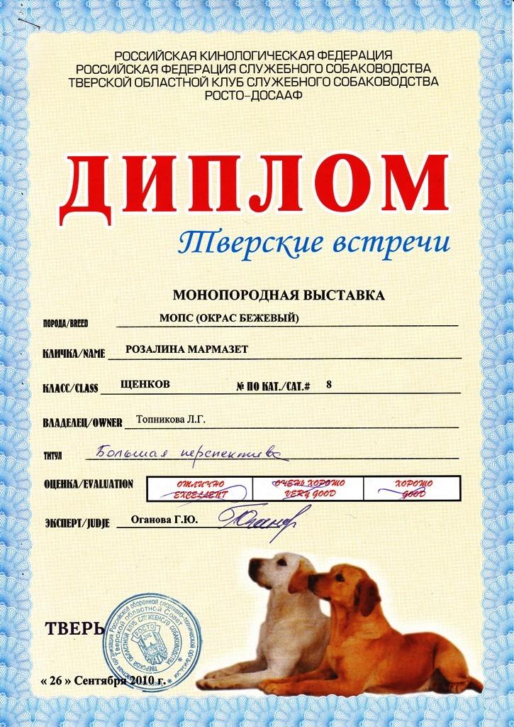"""26.09.2010.моно.кл.щенков, """"Большая перспектива"""", экс.Оганова Г.Ю."""