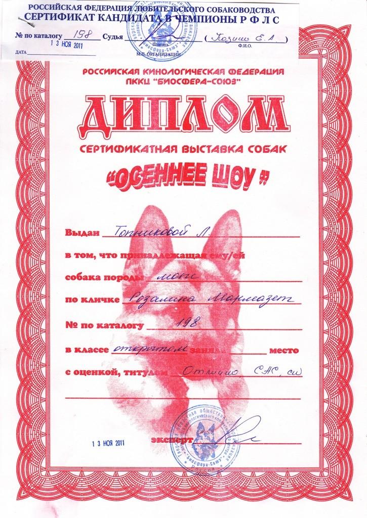 """13.11.2011.кл.открытый,""""Отлично"""", САС, КЧФ, экс.Козина Е.А."""