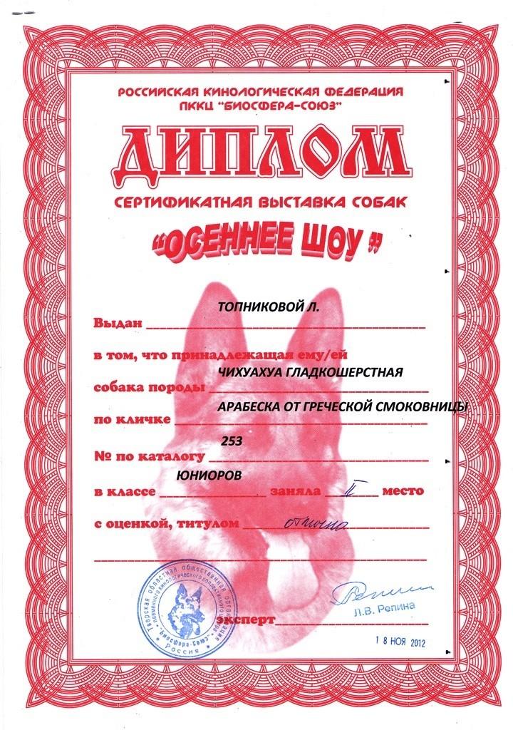 """18.11.2012.кл.юниоров, """"Отлично-II """",экс.Репина Л.В."""