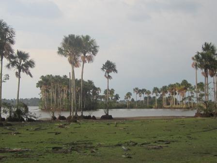 Laguna la Cristalina - RNSC Chaviripa