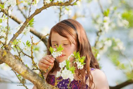 Frühling - Zeit der Sinne, des sich Öffnens und inneren Wachstums