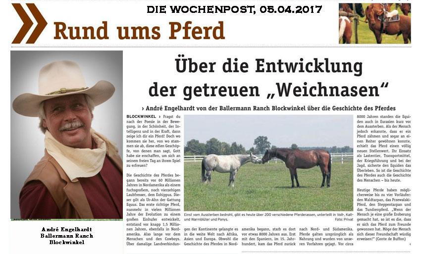"""Andre Engelhardt und die """"Kleine Abstammungsgeschichte der Weichnasen"""" - DIE WOCHENPOST, 05.04.2017"""
