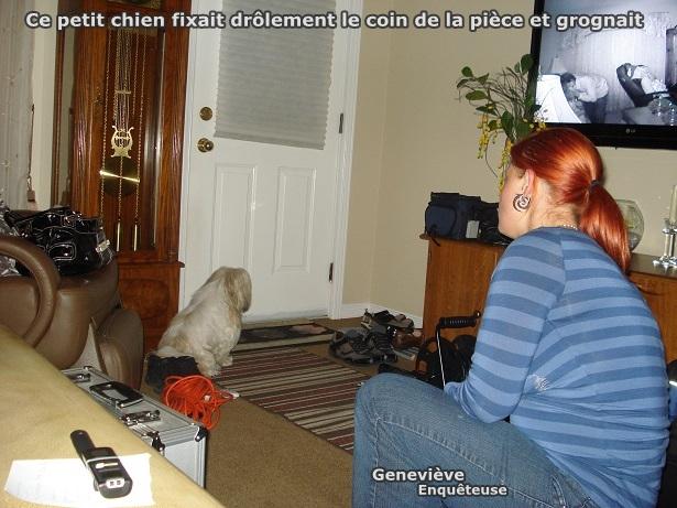 Le petit chien avec l'enquêteuse Geneviève.